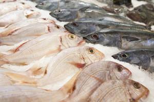 Il pesce è ricco di iodio