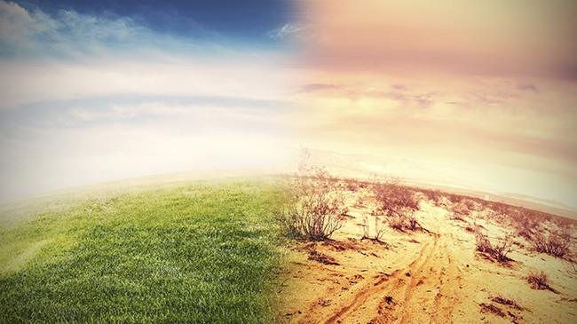 Cambiamenti climatici e salute