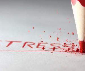 Stress sano